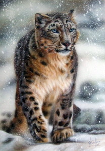 Snow Leopard wildlife painting