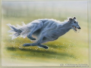 Borzoi painting watercolor