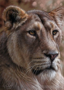 lioness wildlife painting