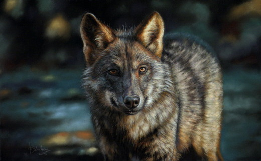 pastel painting grey wolf