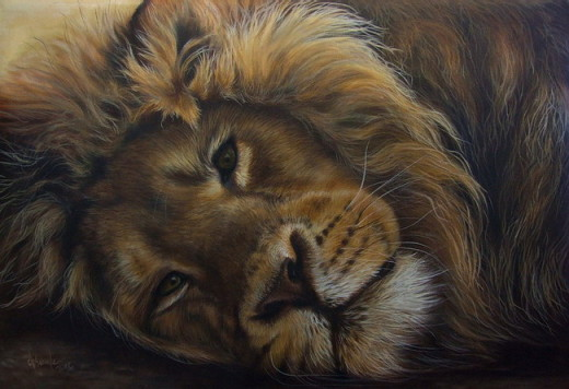 Wildlife Oil painting Lion