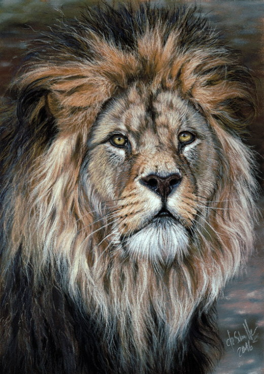 Lion wildlife art