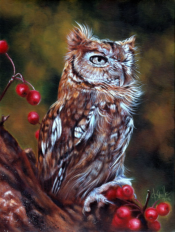 Screech Owl oil painting