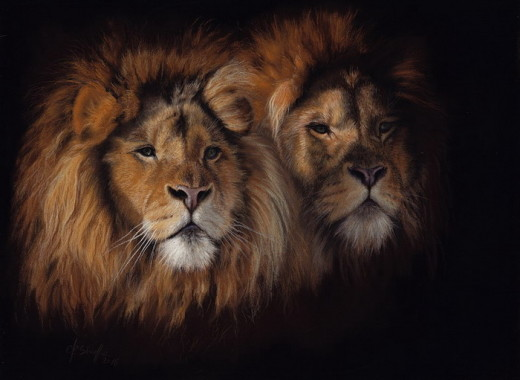 Lions pastel painting