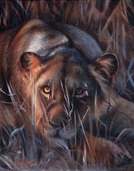 wildlife art Lioness