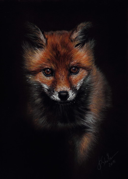red fox wildlife art