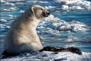 Wildlife art Polar Bear