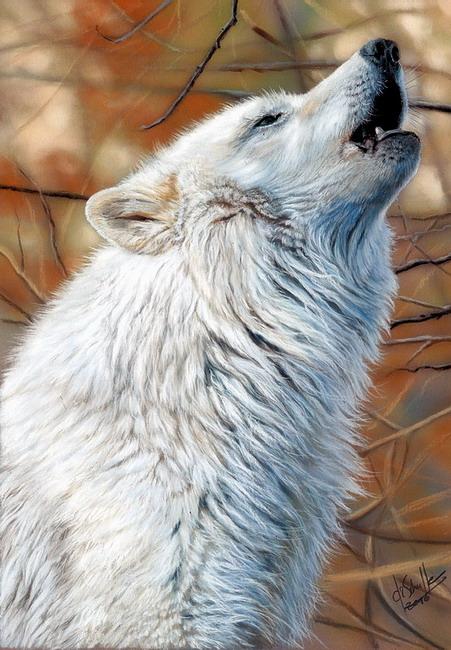 White Wolf pastel art