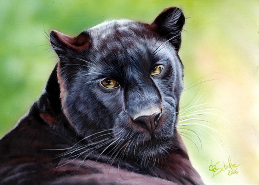 Black Leopard oil painting
