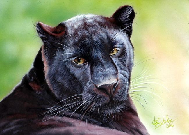 Black Leopard oil painting