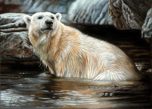 pastel painting polar bear