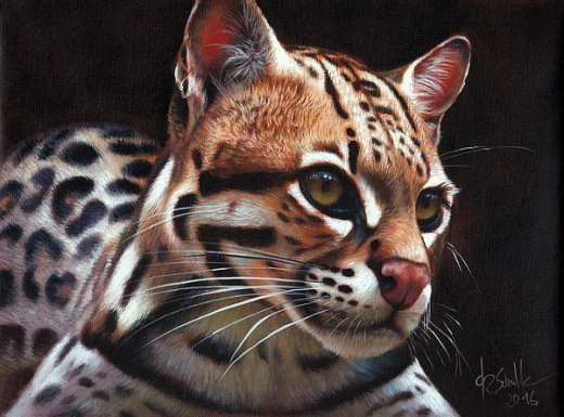 Wildlife Art Ocelot