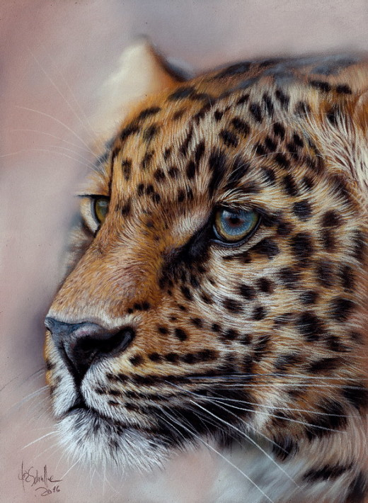 Wildlife Art Leopard