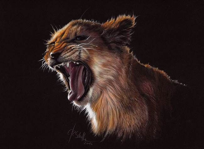 Wildlife art Lion cub