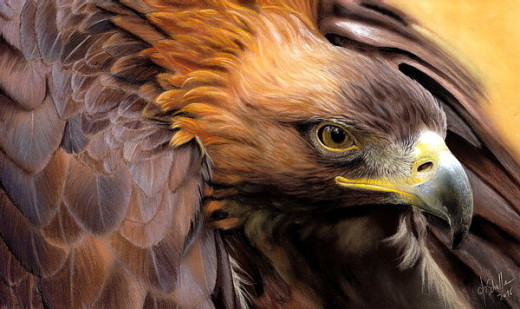 Golden Eagle pastel painting
