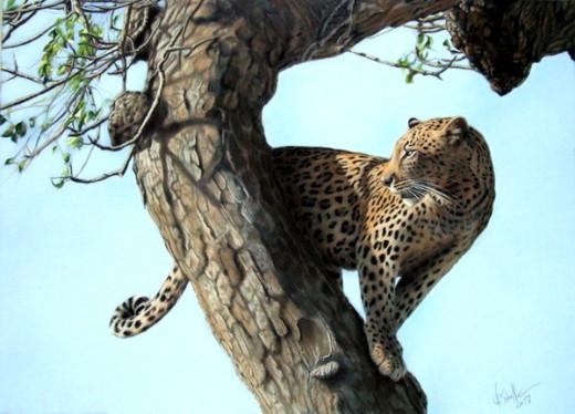 Wildlife art Leopard