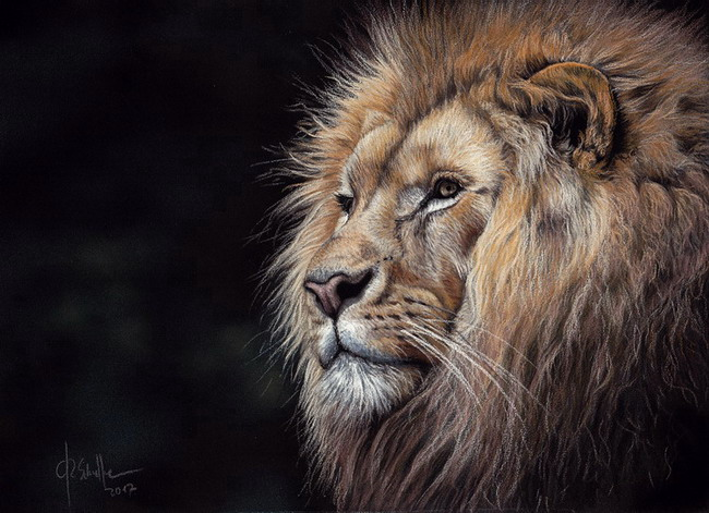 Wildlife art lion